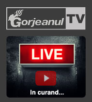live stream gorjeanul tv