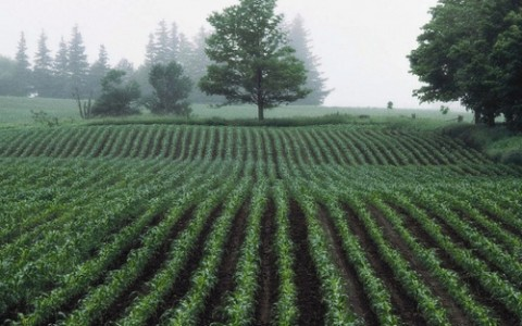 agric.ecologica