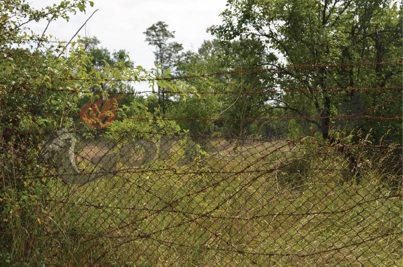 primul teren cedat municipalitatii