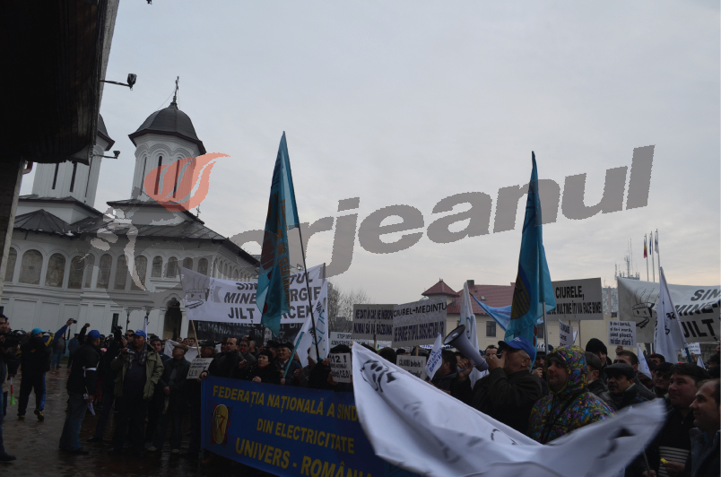 protest (11)