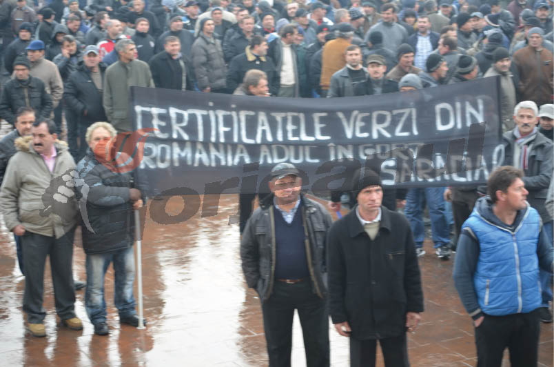 protest (3)