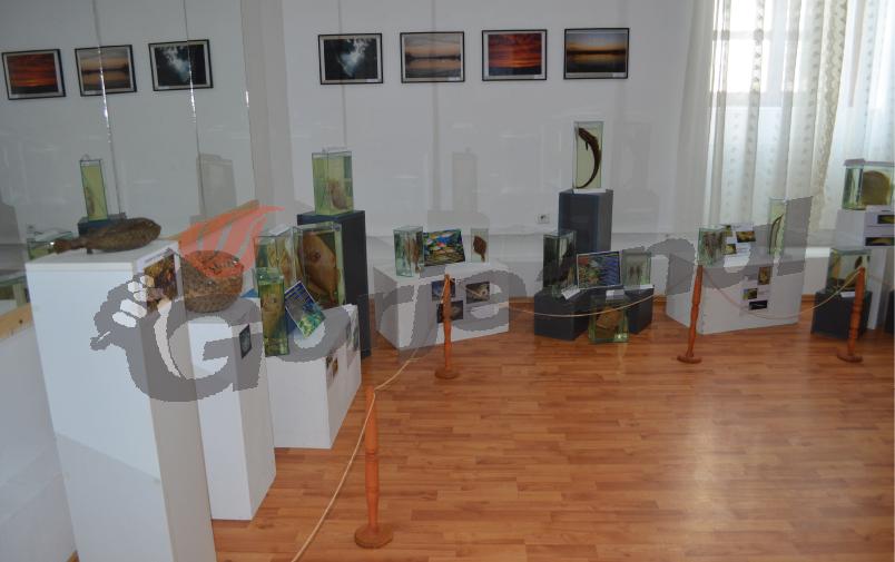 expo marina (2)