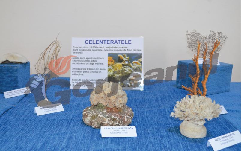 expo marina (3)