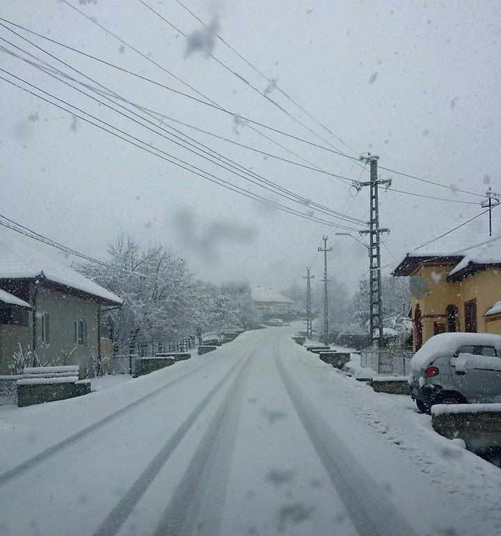 novaci iarna