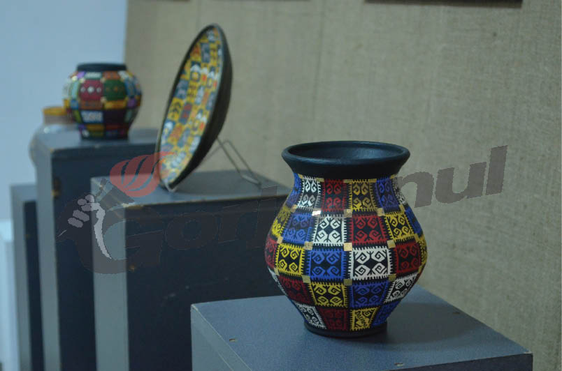 expozitie muzeu (4)