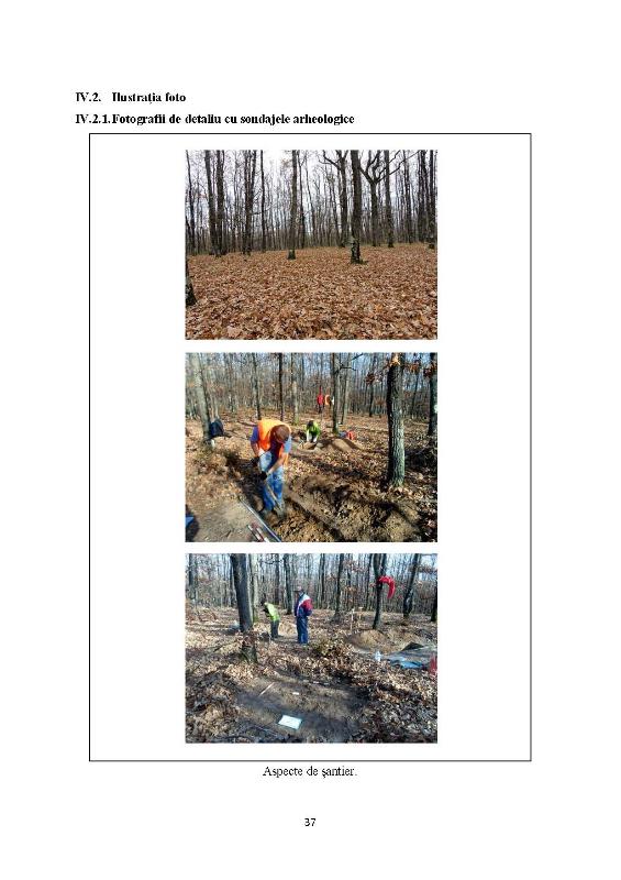 Pages from 1 Raport de diagnostic Balanesti - Dealul   Mare-2