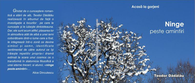 coperti - Ninge peste amintiri