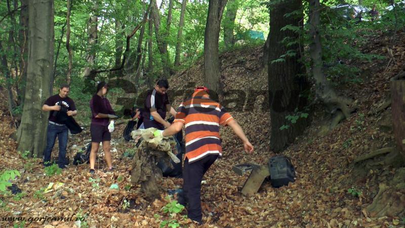 ecologizare (8)