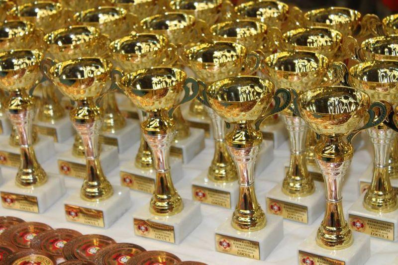 medalii karate (4)