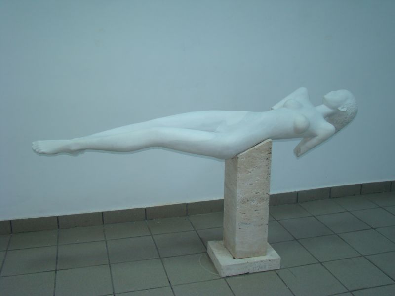 arta libertate perfecta (4)