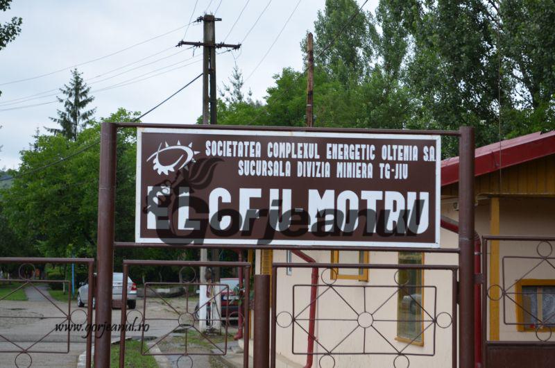 elcfu motru (2)