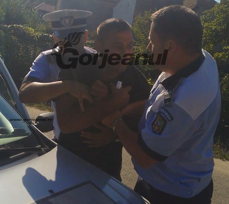 arest tigan baia de arama_ins