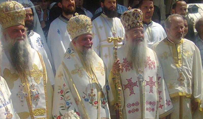 manastirea lainici (4)
