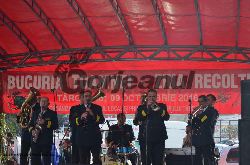 festivalul toamnei (2)