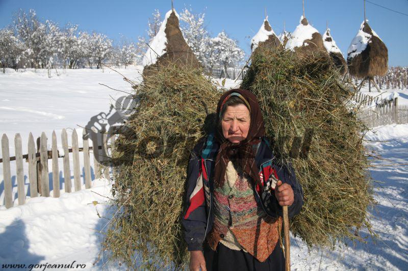 iarna la sohodol (1)