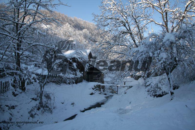 iarna la sohodol (10)