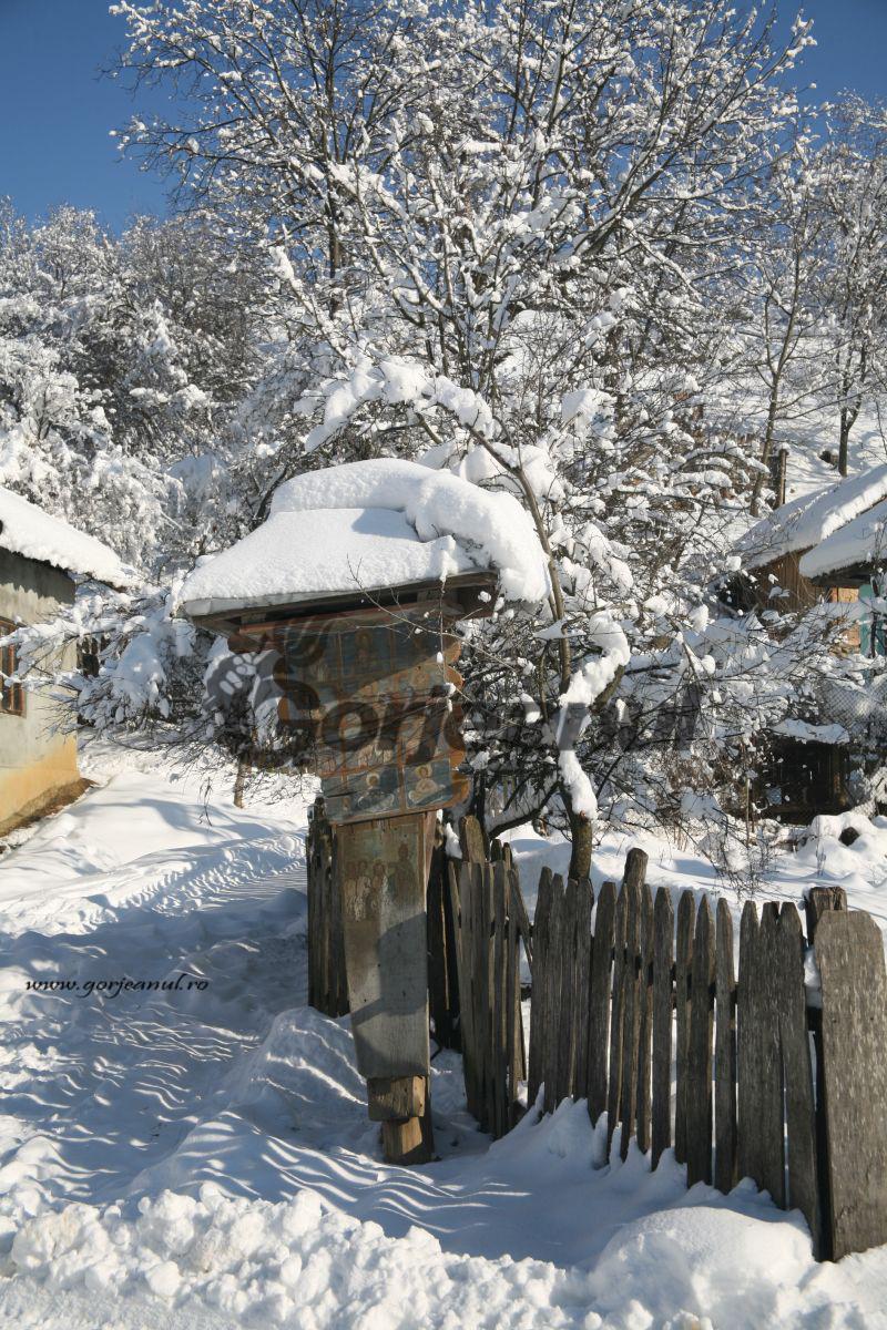 iarna la sohodol (3)